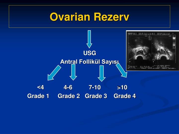 Ovarian Rezerv