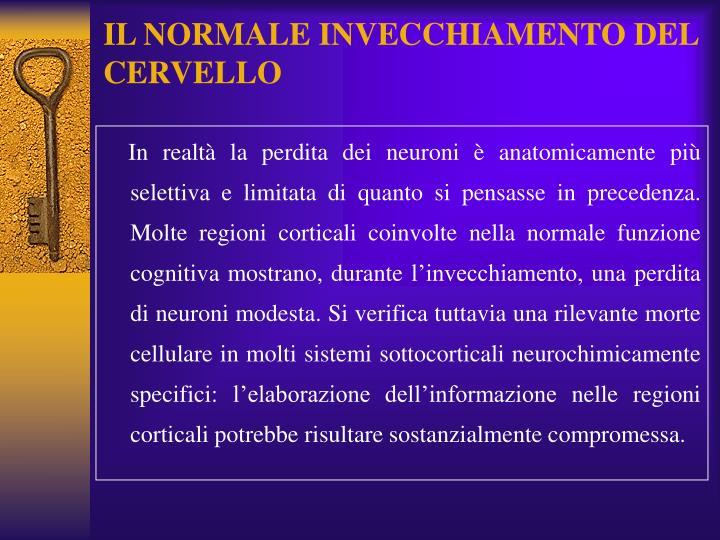 IL NORMALE INVECCHIAMENTO DEL CERVELLO