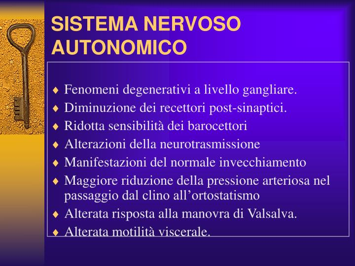 SISTEMA NERVOSO AUTONOMICO