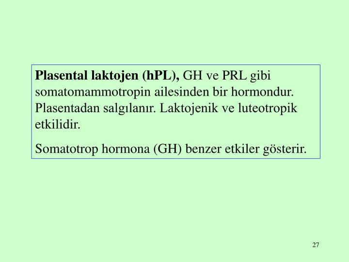 Plasental laktojen (hPL),