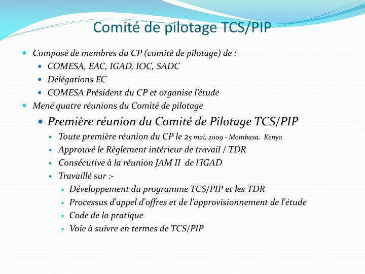 Comité de pilotage TCS/PIP