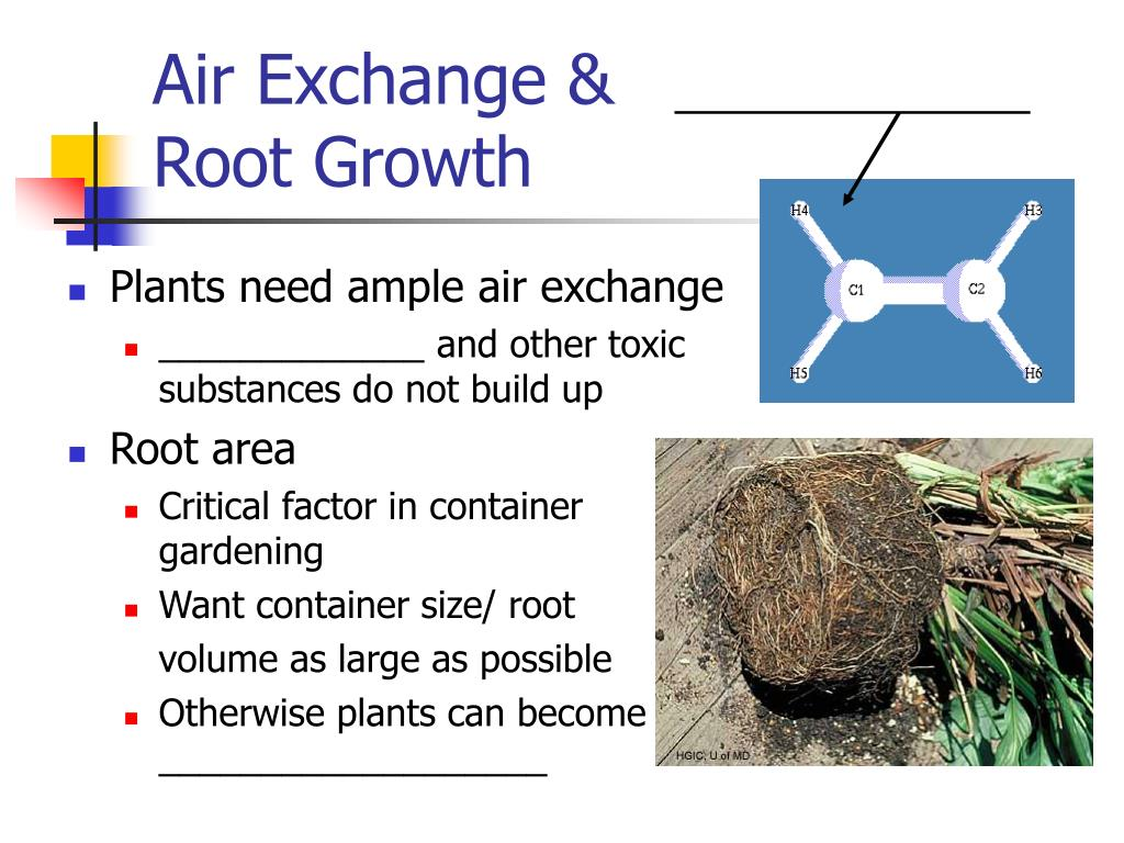 Air Exchange &