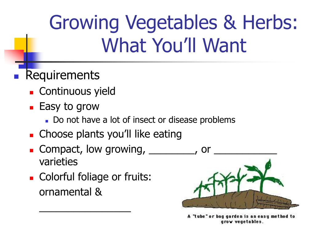 Growing Vegetables & Herbs: