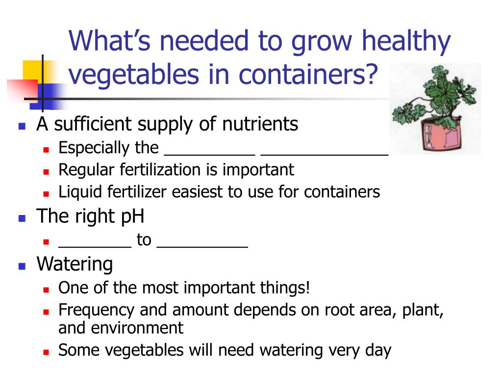 What's needed to grow healthy vegetables in containers?