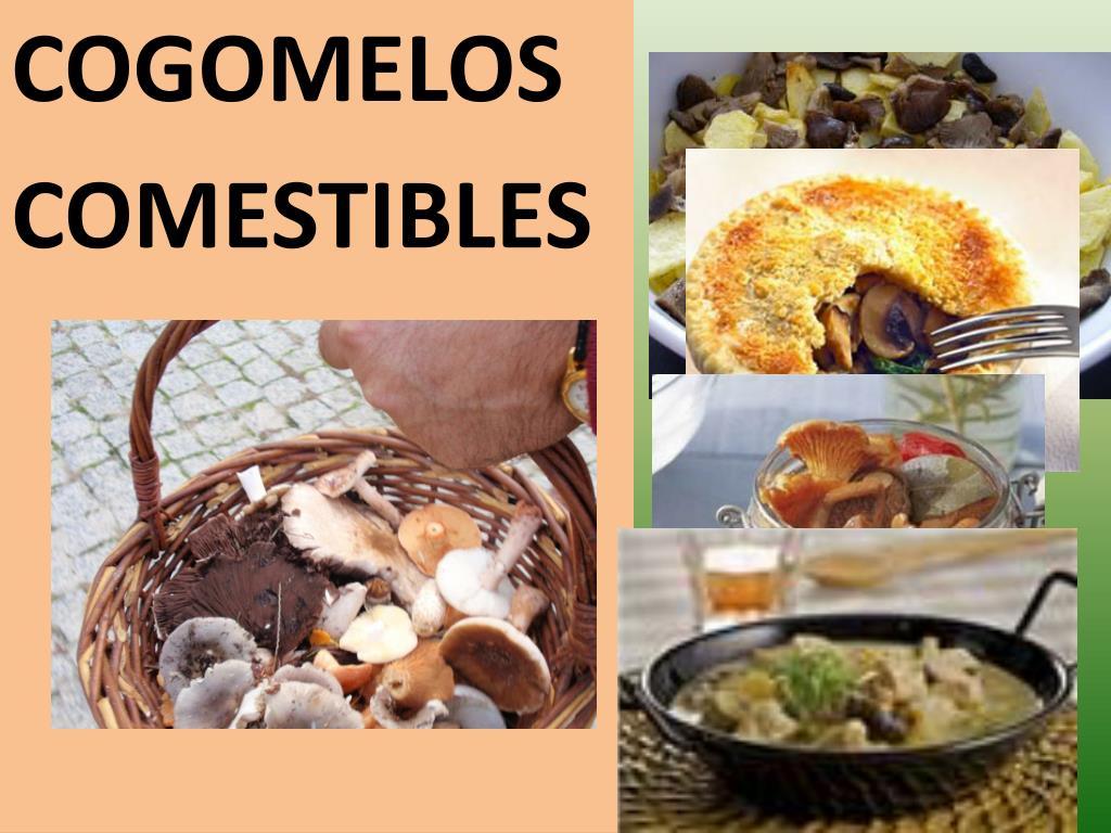 COGOMELOS