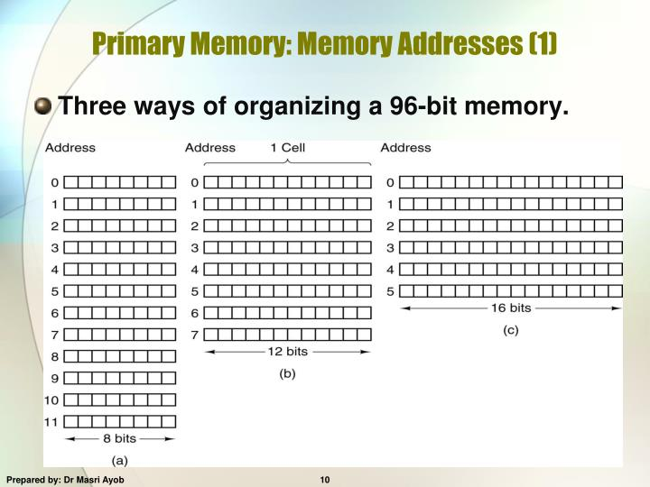 Primary Memory: Memory Addresses (1)