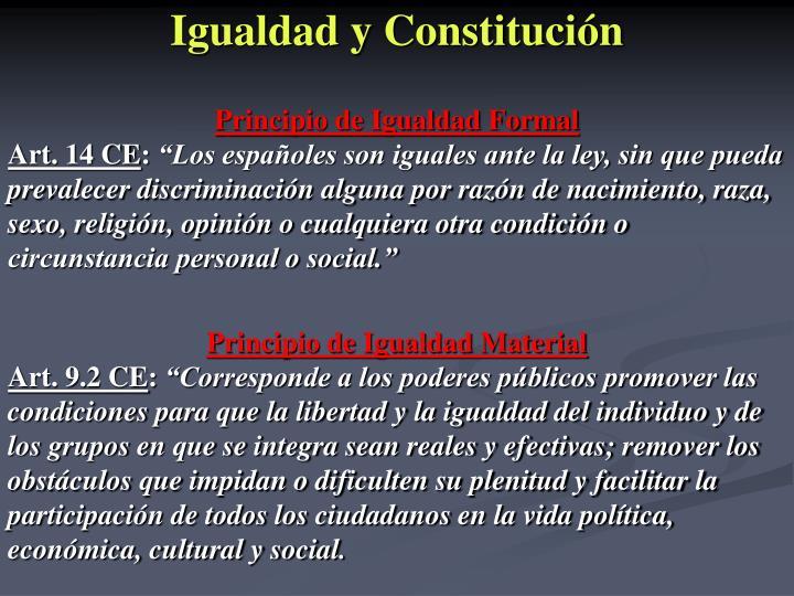 Igualdad y Constitución