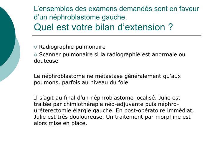 L'ensembles des examens demandés sont en faveur d'un néphroblastome gauche.