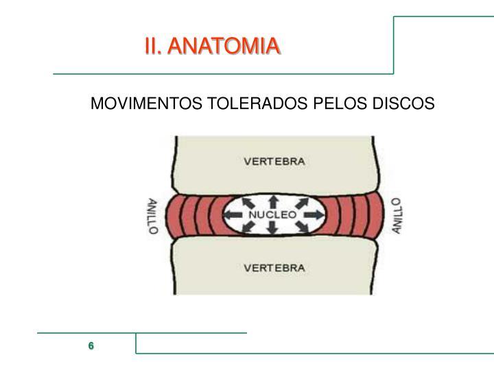 II. ANATOMIA