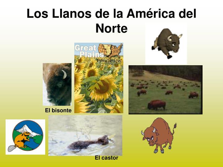 Los Llanos de la América del Norte
