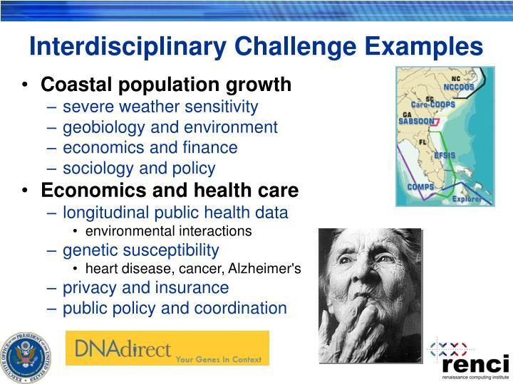 Interdisciplinary Challenge Examples