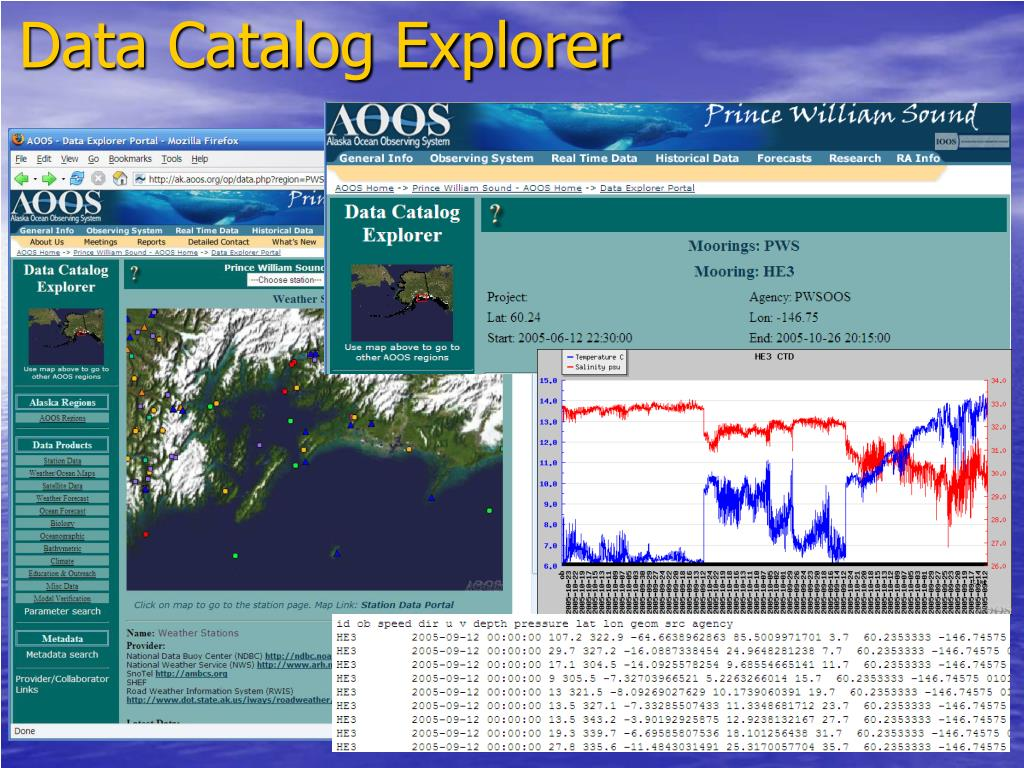 Data Catalog Explorer