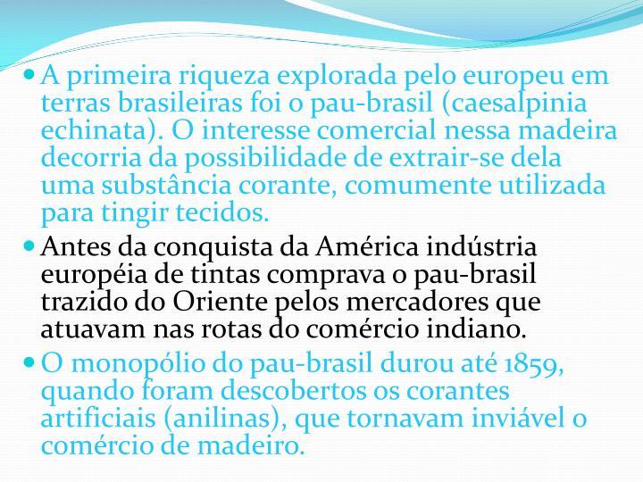 A primeira riqueza explorada pelo europeu em terras brasileiras foi o pau-brasil (