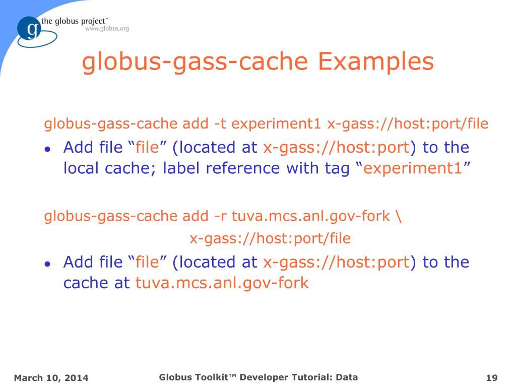 globus-gass-cache Examples