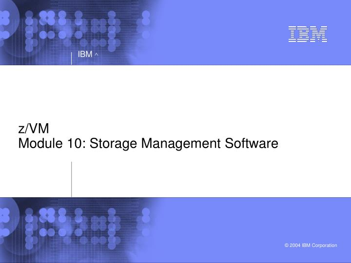 Z vm module 10 storage management software l.jpg