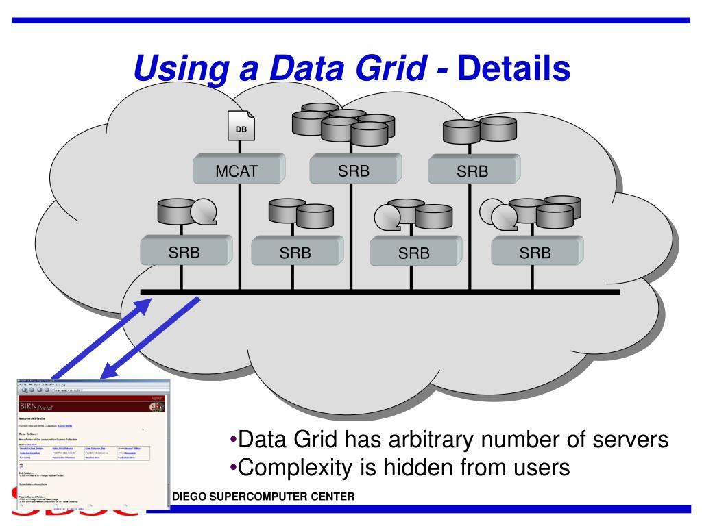 Using a Data Grid -