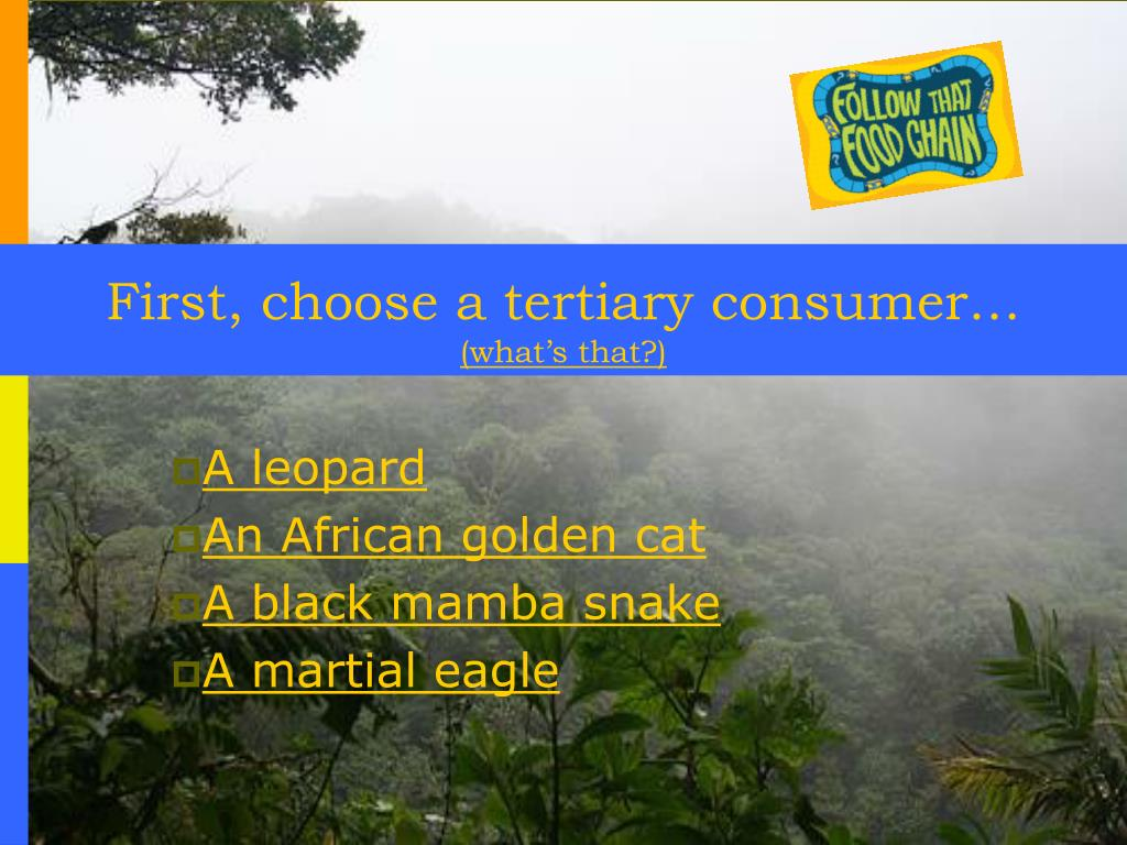 First, choose a tertiary consumer…