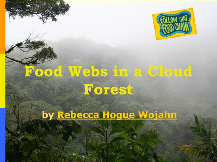 Food webs in a cloud forest l.jpg