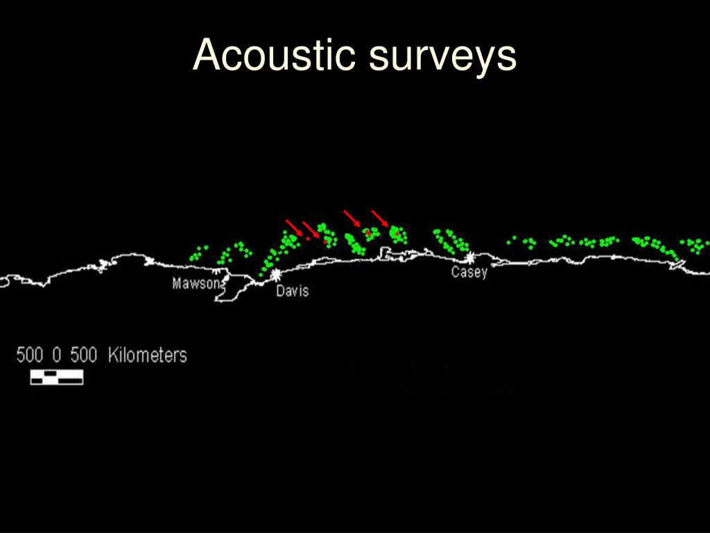 Acoustic surveys