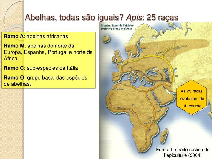 Fonte: Le traité rustica de l´apiculture (2004)