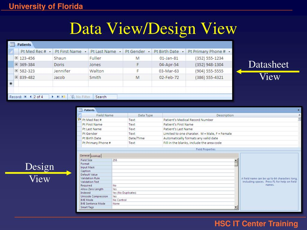 Data View/Design View