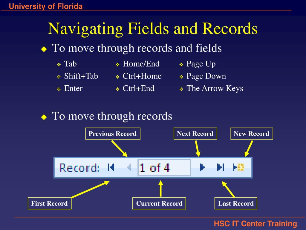 Navigating Fields and Records