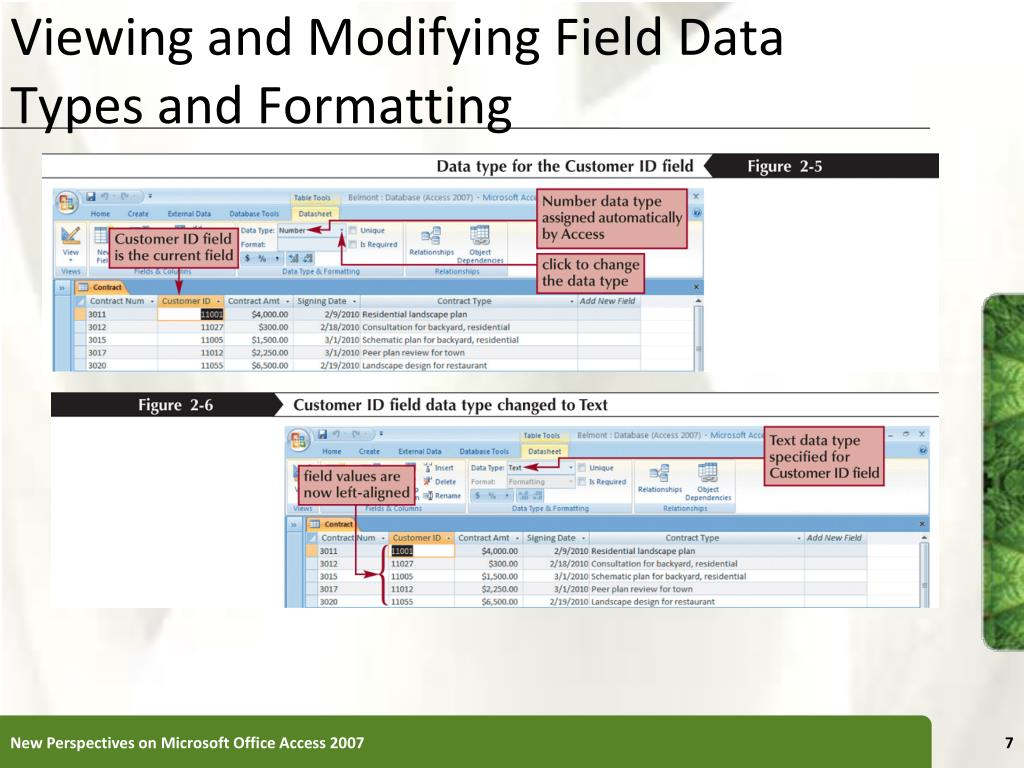 Viewing and Modifying Field Data Types and Formatting