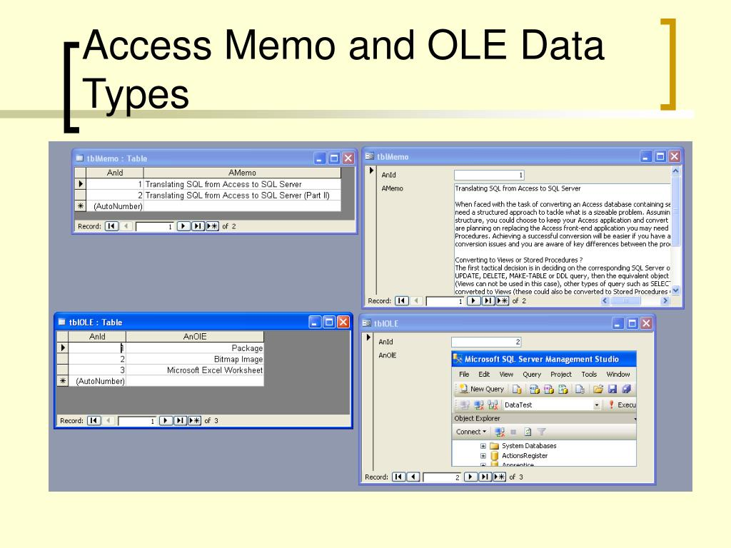 Access Memo and OLE Data Types
