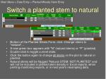 switch a planted stem to natural
