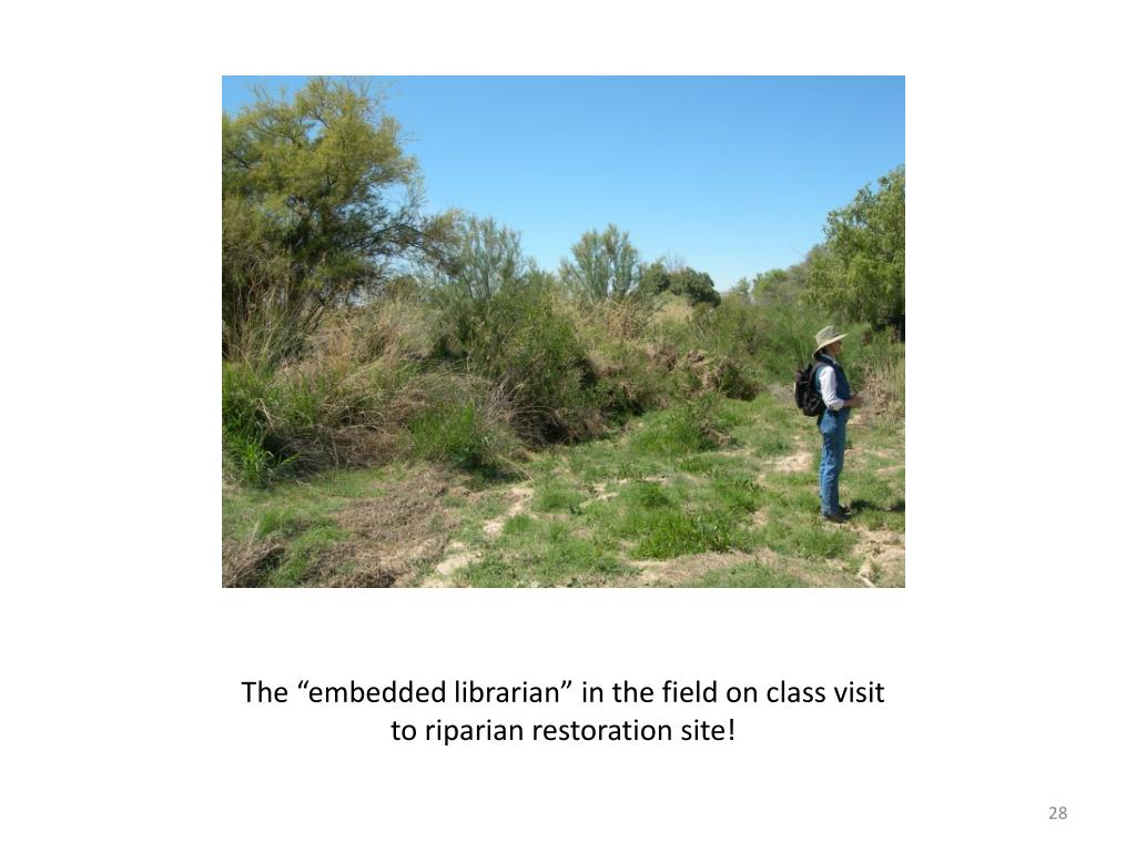 "The ""embedded librarian"" in the field on class visit to riparian restoration site!"