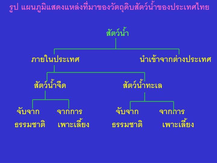 รูป แผนภูมิแสดงแหล่งที่มาของวัตถุดิบสัตว์น้ำของประเทศไทย