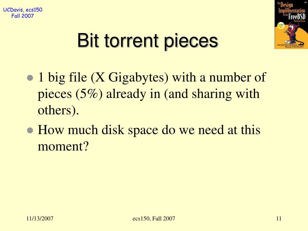 Bit torrent pieces