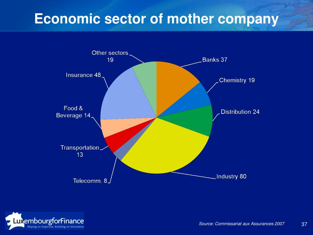 Economic sector of mother company