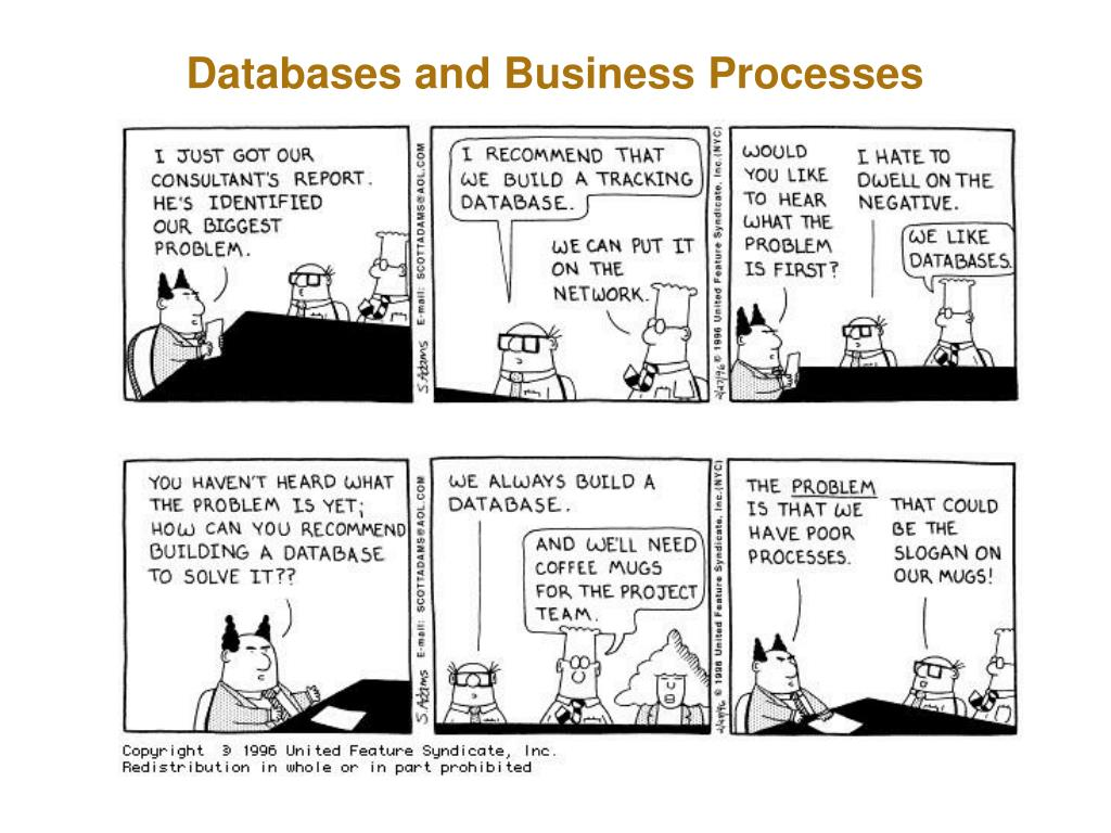 Databases and Business Processes