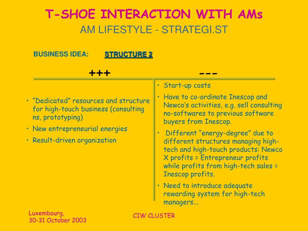 T-SHOE INTERACTION WITH AMs