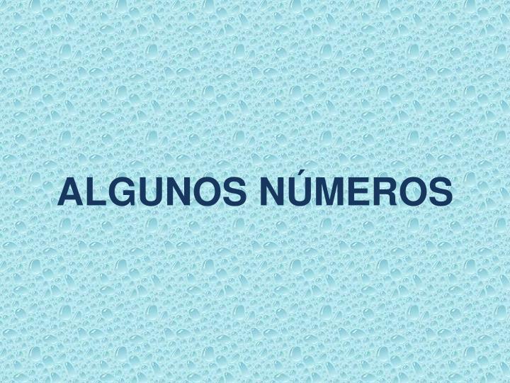 ALGUNOS NÚMEROS