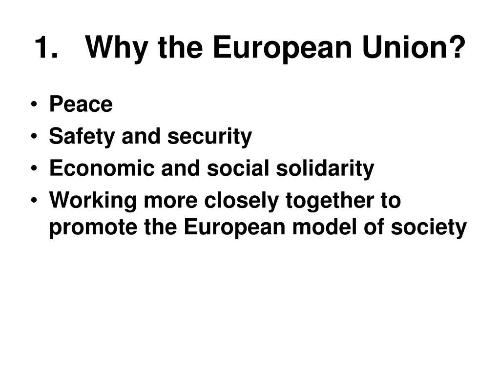 1.   Why the European Union?