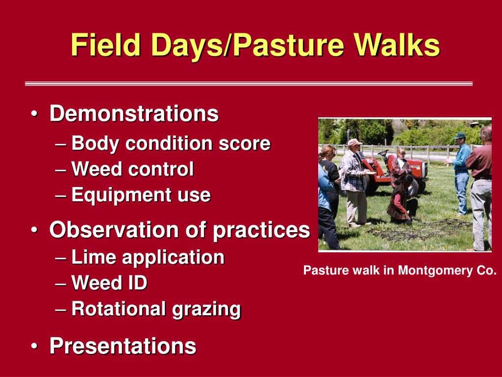 Field Days/Pasture Walks