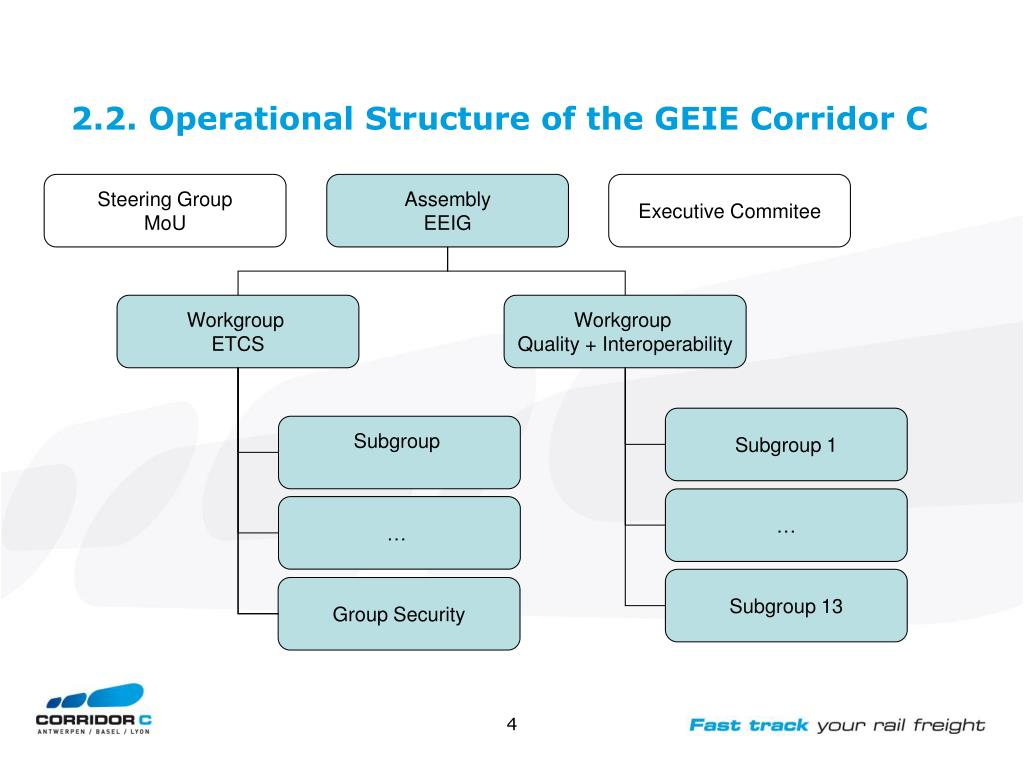 2.2. Operational Structure of the GEIE Corridor C