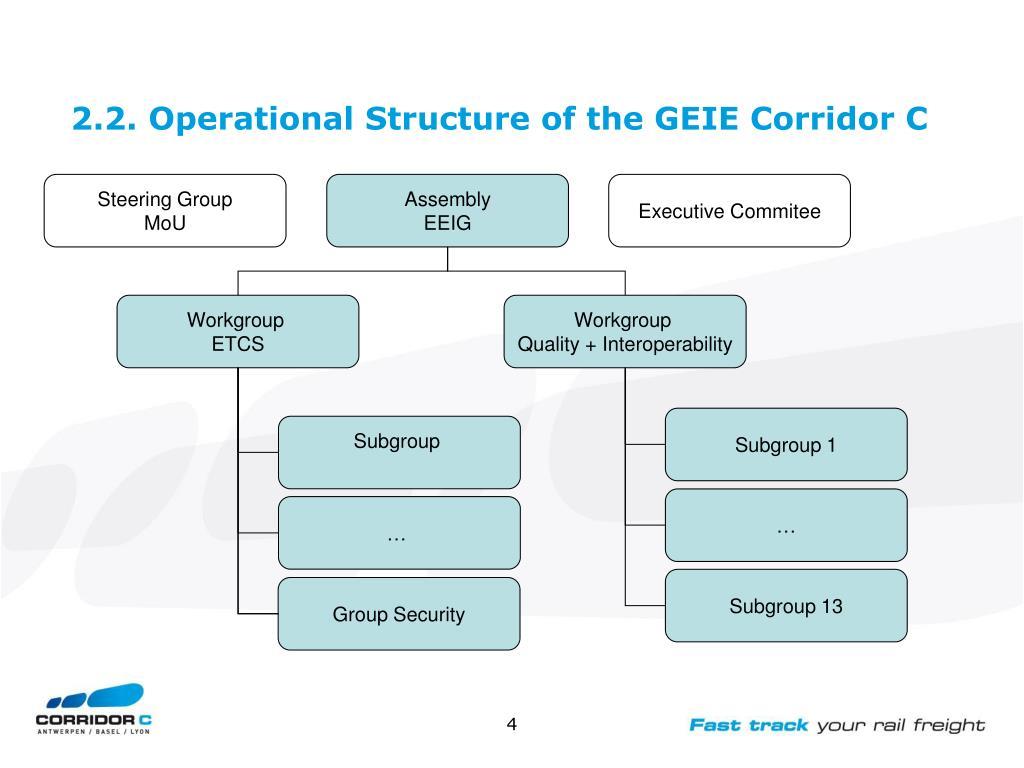 2.2. Operational Structure of the GEIE Corridor C