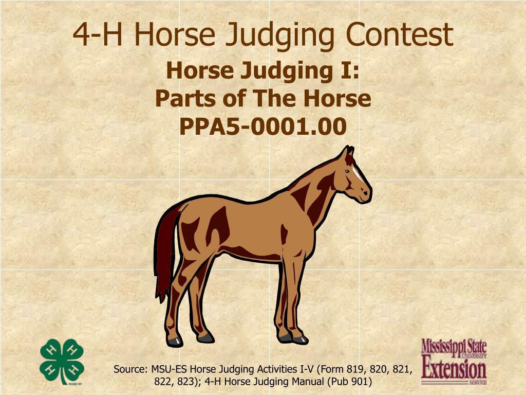 4 h horse judging contest