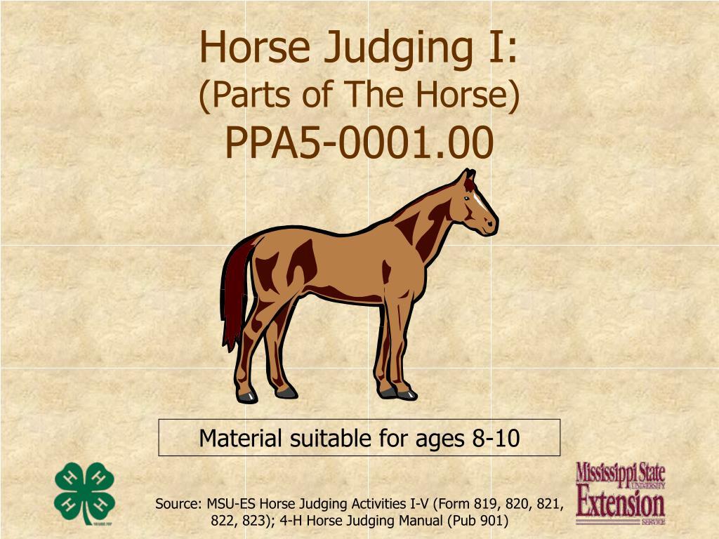 Horse Judging I: