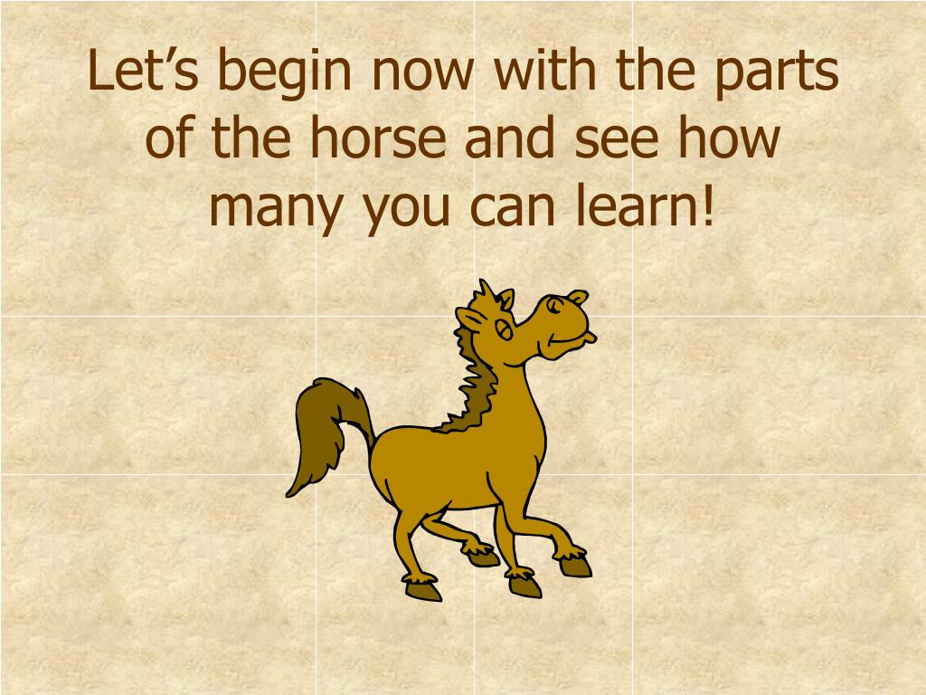 Let's begin now with the parts of the horse and see how many you can learn!