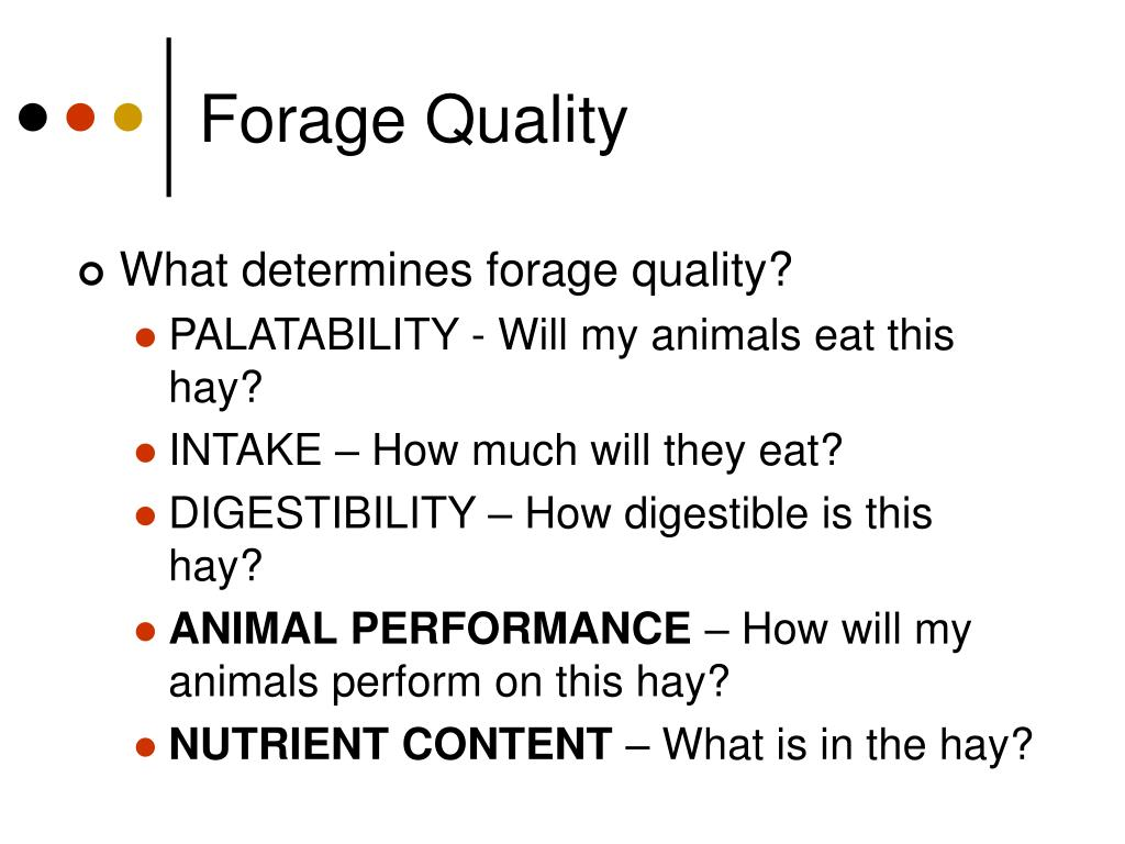 Forage Quality