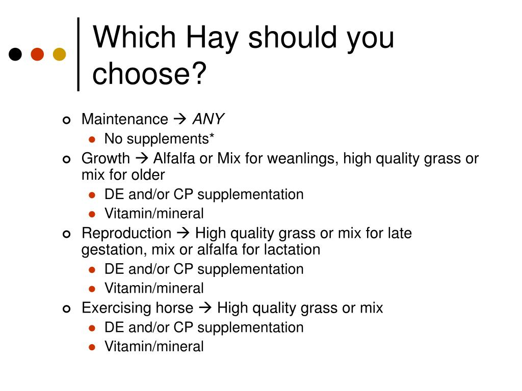 Which Hay should you choose?