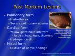post mortem lesions