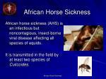 african horse sickness2