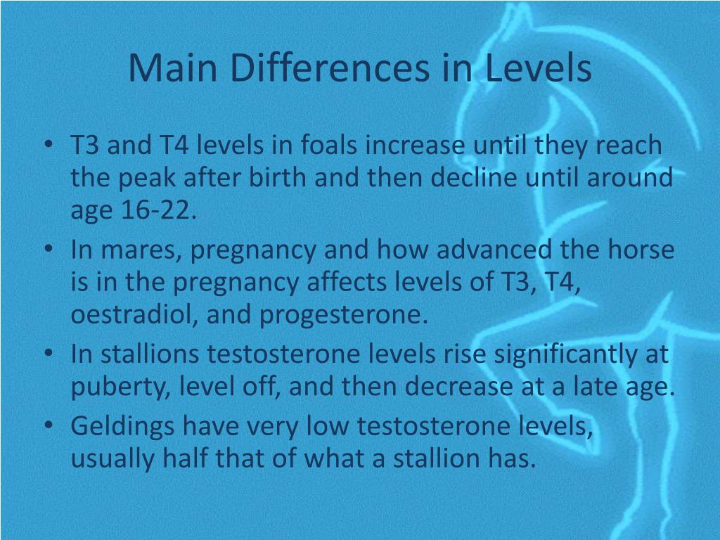 Main Differences in Levels