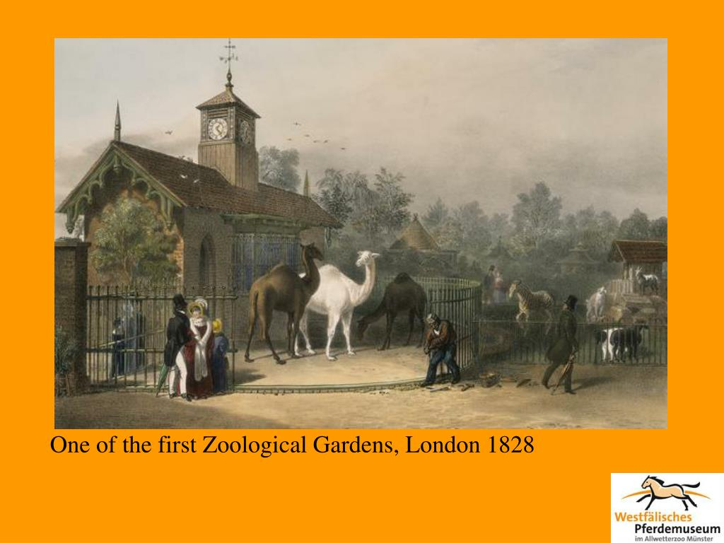 One of the first Zoological Gardens, London 1828