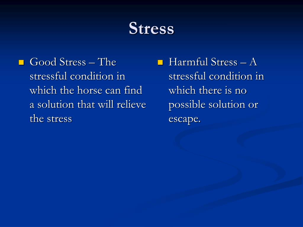 Good Stress – The stressful condition in which the horse can find a solution that will relieve the stress